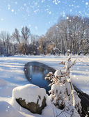 Winter landscape in frosty day — Stok fotoğraf
