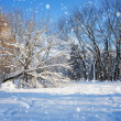 Beautiful winter landscape — Stockfoto #40072669