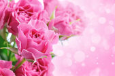 Bouquet of delicate roses, floral background — Stock Photo