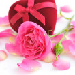 Pink roses and gift box on a white background — Stock Photo