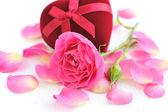 Rosas rosas y caja de regalo sobre un fondo blanco — Foto de Stock