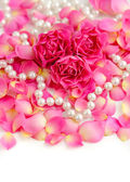 Pink roses and pearls — Stock Photo