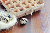 Quail eggs on wooden background — Stockfoto