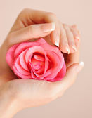 Closeup image of pink french manicure with rose — Stok fotoğraf