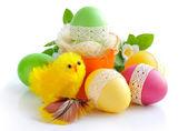 复活节彩蛋和鸡在白色背景上 — 图库照片
