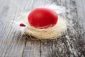 红色的复活节彩蛋是在旧的木制背景上巢里 — 图库照片