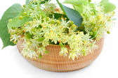 Flowers of linden tree in wooden bowl on a white background — Stock Photo