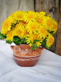 Bouquet of dandelions in a ceramic jug — Stock Photo