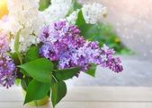 Bukett i lila på en naturlig bakgrund — Stockfoto