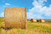 Straw bales in irish countryside — Stock Photo