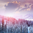Stock Photo: Beautiful winter landscape