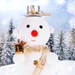 Snowmen — Stock Photo #13775613