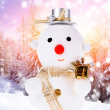 Snowmen — Stock Photo #13775626