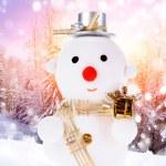 Snowmen — Stock Photo #13775626