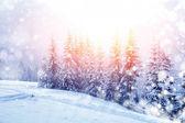 Paysage d'hiver magnifique — Photo