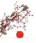 圣诞边框设计 — 图库照片