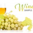 Branch of grapes and glass of wine — Stock Photo