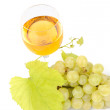 Branch of grapes and glass of wine — Stock Photo #14067188