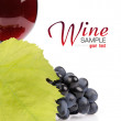 Branch of grapes and glass of wine — Stock Photo #14067207