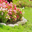 Stock Photo: Pretty manicured flower garden with red flowers