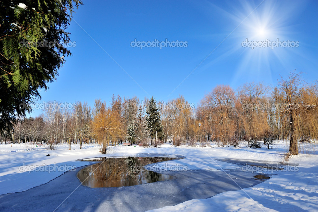 Winter park in snow in sunny day  Foto Stock #19158037