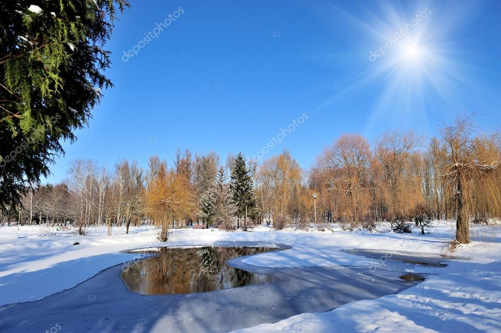 Winter park in snow in sunny day — Stock Photo #19158037