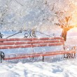 Bench in winter park — Stock Photo