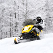 Man on snowmobile — Stock Photo #20693009