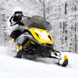Mon snowmobile — Stock Photo #21781815