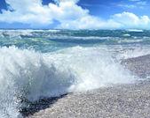 Beach Wave — Photo