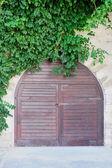 Wooden door and green plants — Stock Photo