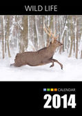 Calendar 2014. Cover. Deer in winter forest — Stock Photo