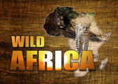 Africa Wildlife Map Design — Stock Photo
