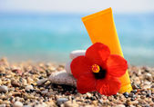 Stack of pebbles, cream and flower at the beach — Stock Photo
