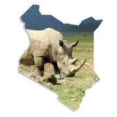Kenya map with rhino — Stock Photo