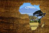 Africa Wildlife Map Design — Foto Stock