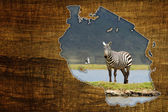 Tanzania Wildlife Map Design — Stock Photo