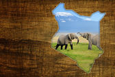 Kenya Wildlife Map Design — Stock Photo