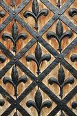 Teil einer Tür der alten Burg — Stockfoto