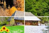 Four seasons in one photo — Stock Photo