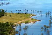 African landscape, bird's-eye view on lake Nakuru — Stock Photo
