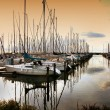 Stock Photo: Harbour boats
