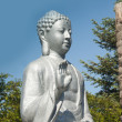 Photo: Buddhstatue