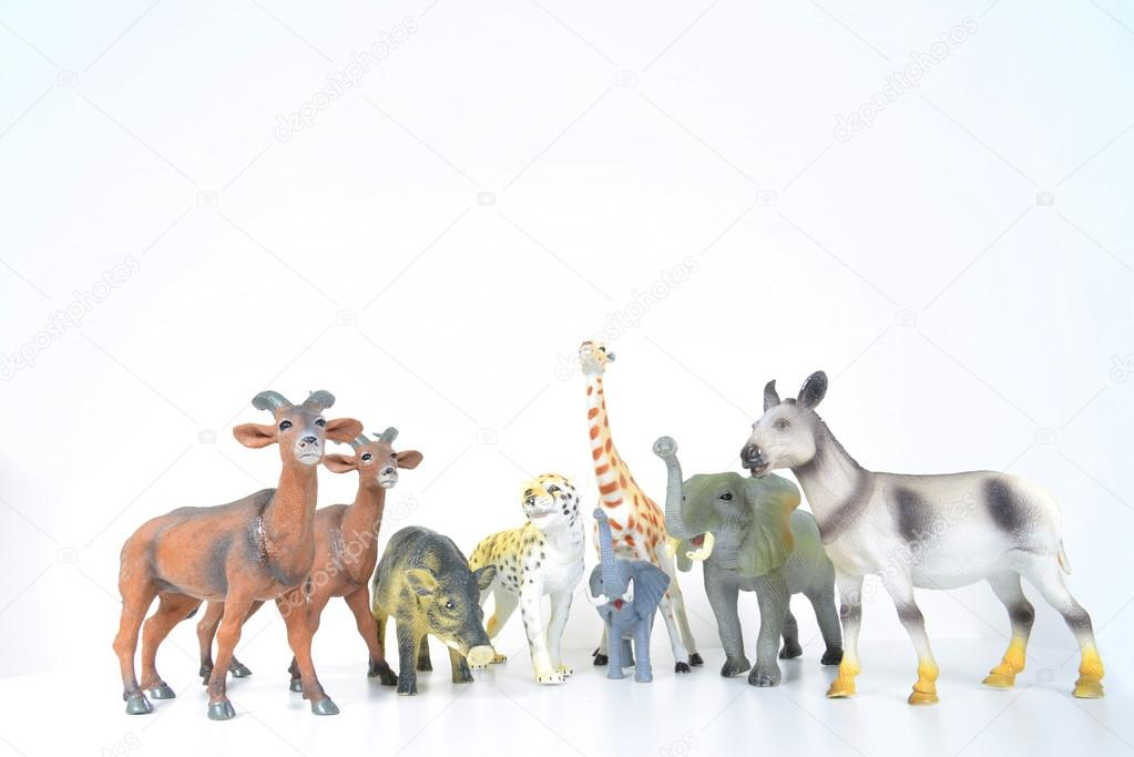Various Animals Photos Plastic Various Animals on a