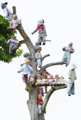 Baby tree — Stock Photo