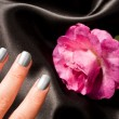 Silver Manicure for woman cosmetic — Stock Photo #17605021