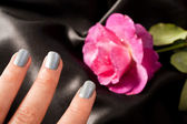 Silver Manicure for woman cosmetic — Stockfoto