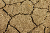 Cracked soil. Cracked mud representing drought or implying global warming — Stock Photo