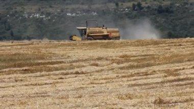 Modern combine harvester at work — Vídeo de stock