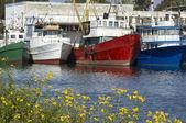 五颜六色的船 — 图库照片